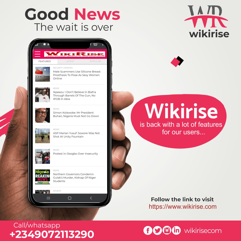Wikirise 300 by 250 banner